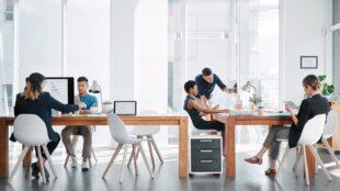 Employees in an office